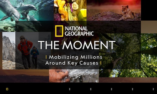 National Geographic The Moment The Shorty Awards