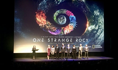 One Strange Rock Series Creates 14 000 New Plants The Shorty Awards